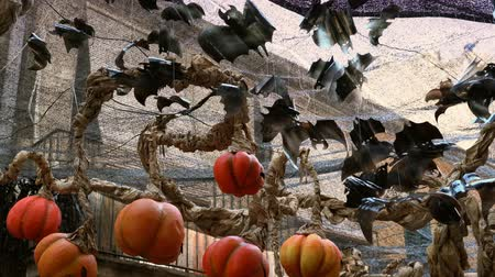 nietoperz : halloween bats and pumpkin lanterns to decorate streets on halloween celebration