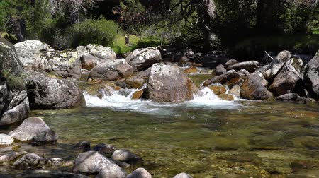 sudoeste : A mountain stream with clear water flows among large stones in a forest.