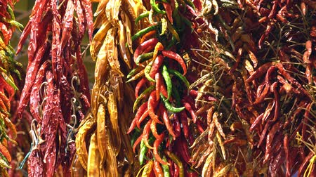 перец чили : dried peppers of different colors are dried on a store counter Стоковые видеозаписи
