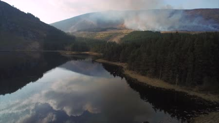 drone : Scenic drone footage of still lake and mountains. Tracking shot of standing water with evergreen forest in front of wildfire. Smoke is emitting from woodland on mount. Reflection of trees and  mountains is falling in water.