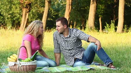 oturma : couple at a picnic on a summer day (NTSC) Stok Video