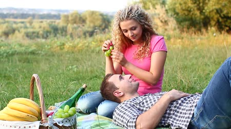 пикник : couple at a picnic on a summer day (PAL) Стоковые видеозаписи