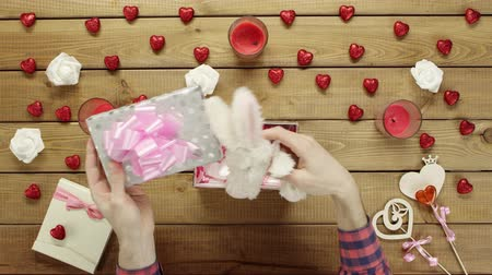 króliczek : Man puts soft bunny into the gift box as valentine day present, top view