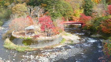 red maple : Nice view of a sightseeing boat cruising on autumn Lake Towadako in Towada Hachimantai National Park