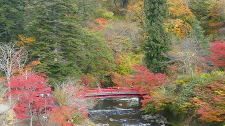 queda : Nice view of a sightseeing boat cruising on autumn Lake Towadako in Towada Hachimantai National Park