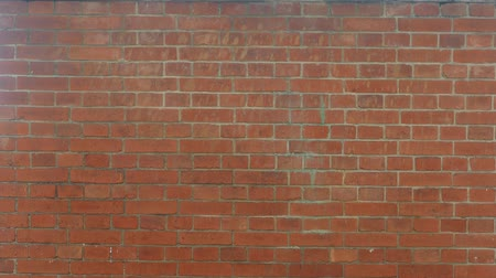 benekli : The Old style brick made wall for texture or background Stok Video