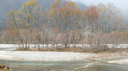 bashi : Kamikochi National Park in the Northern Japan Alps of Nagano Prefecture, Japan. Beautiful mountain in autumn leaf with river Stock Footage