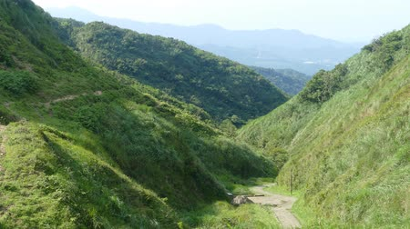 narożnik : Miscanthus on the Cao Ling Ancient Trail in the northeast corner of Taiwan