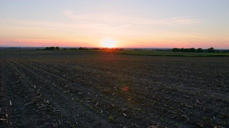 idil : Wide Field and Beautiful Sunset