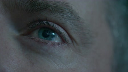 irys : Closeup macro image of human male eye open