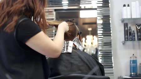 brushing : Professional hairdresser is brushing and coloring hair of her client.
