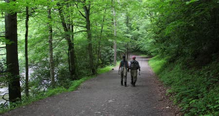 Two fisherman are walking in the forest after fishing Stok Video