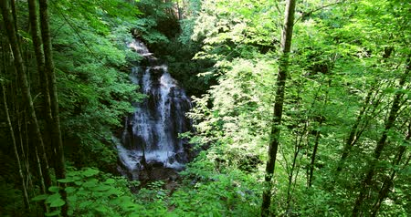 north stream : Beautiful waterfall in Great Smoky Mountains National Park Stock Footage