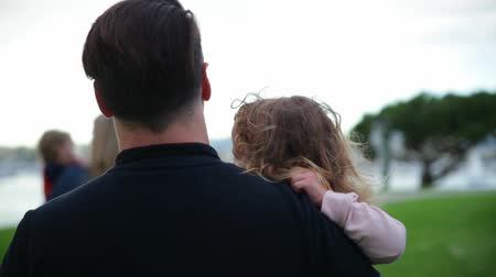 kartáč na vlasy : Daughter sits on her fathers hands. They are walking outdoors together.