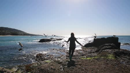 jump away : Woman is chasing after gulls at a beach. Gulls fly away.