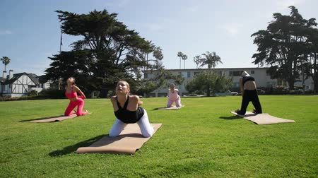 jimnastik : Group of young females practicing yoga on the seaside during the day. Green Grass.