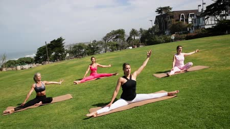 meditující : Group of young females practicing yoga on the seaside during the day. Green Grass.