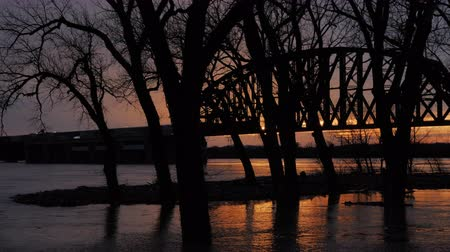 truss : A cinematic tracking shot of a train crossing a bridge at sunset over a very flooded Ohio River from Louisville, Kentucky into southern Indiana behind large silhouetting trees in the foreground as the camera tracks right.