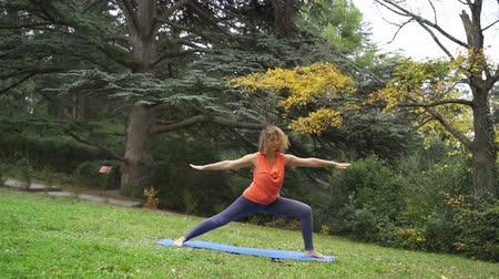 outdoor hobby : Girl doing yoga in the park in autumn 4k