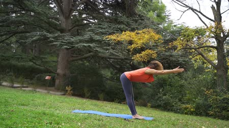 recreational park : Girl doing yoga in the park in autumn 4k