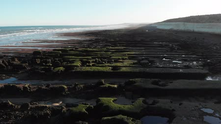 ser : Sea landscape in Patagonia, Argentina, at sunset. Aerial filming with drone. Stock Footage