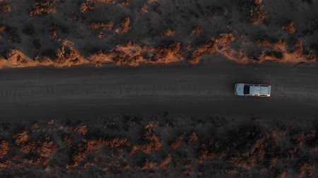 Патагония : Pickup driving through a sea landscape during a sunset in Patagonia, Argentina. Aerial filming with drone. Стоковые видеозаписи
