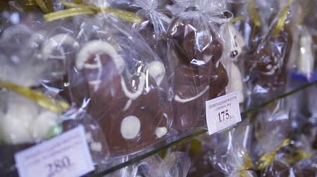 Chocolate figures, in the form of animals, stand behind a display case. HD,
