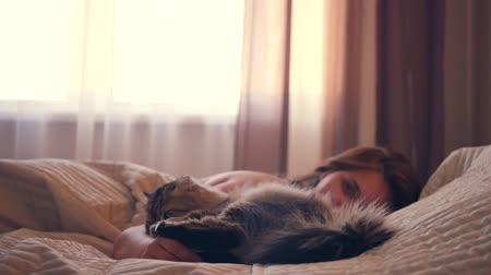 The sleepy girl lies in bed, wants to stroke the cat, he bites her hand. slowmotion, HD,