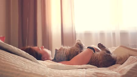 Play with the cat in the morning, lying in the bed. slowmotion, HD, Stok Video