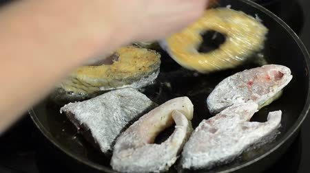 crucian : Fish carp fried in a pan Stock Footage