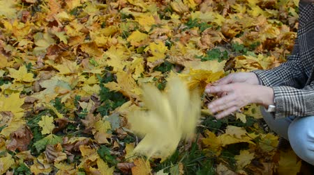 Girl sits and throws yellow maple leaves in the autumn park Stock mozgókép