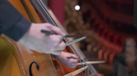 romeno : the musician plays the double bass on stage during a concert in the opera house