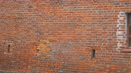 brickwall : old red brick wall with window