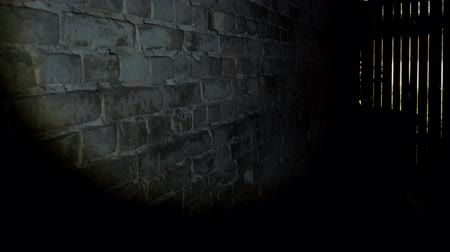 освещать : shine a flashlight on a brick wall after it turns on a wooden door with glazes from where the light comes from