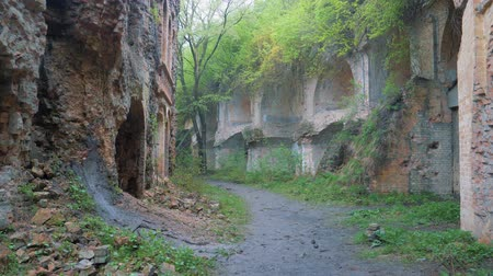 напоминать : old abandoned brick, ruined ruins in the thickets
