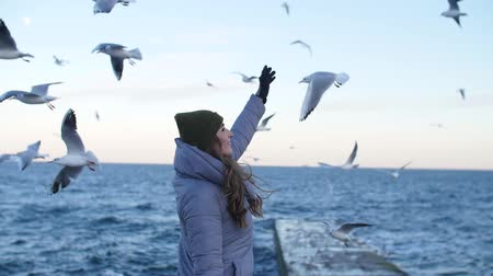 a girl in a hat with gloves and a warm jacket, with a raised hand, smiles against the background of flying seagulls at sea, stands sideways and lowers her hand Stock mozgókép