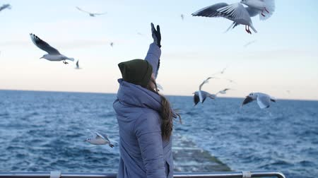 a girl in a gray down jacket, with her back stretching her hand to the flying seagulls Stock mozgókép