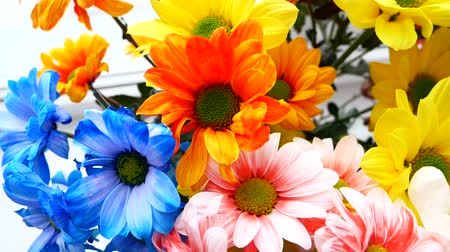 florista : A bouquet of different colors, a birthday party or a mothers day