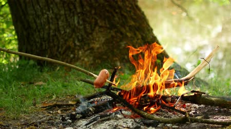 survival : delicious and fragrant sausage roasted on the campfire in the summer forest Stock Footage