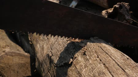 cant : Man saws wooden bar rusty hand saw.