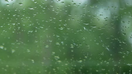 carrancudo : raining drop with green background.