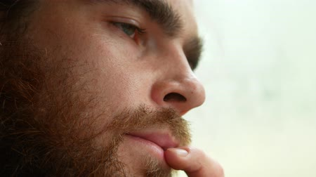 deep forest : handsome man with a beard, side view, close-up. Stock Footage