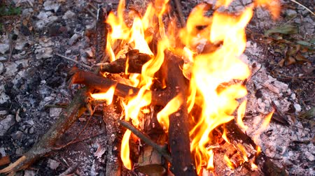 fireball : campfire camp fire summer burning fire campfire in 4K. Stock Footage