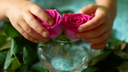 crumpled flower : Little baby hands taking two flowers . Stock Footage