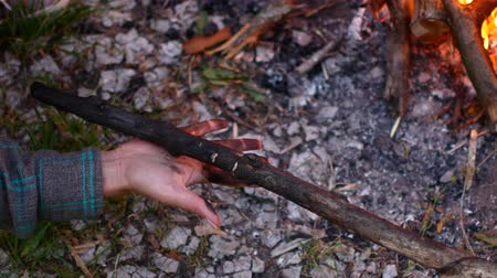 coal fired : The hand of a young woman holds a charred branch.