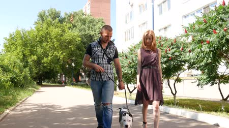 Dolly shot of cheerful people students walking the dog in city park. Beautiful green grass and trees are around.