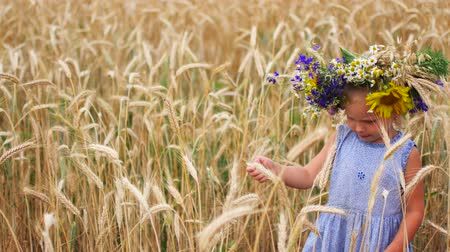 ilkel : A child in a field in the countryside. Portrait of a girl close up. A child eats grain of wheat in a field.