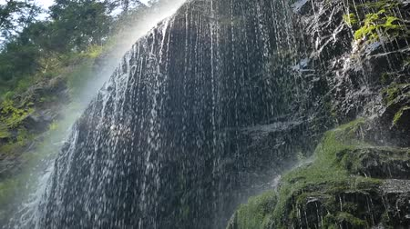 vernal : Beautiful waterfall in the Carpathians. Shooting from the bottom. Stock Footage