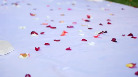 footgear : Close up of red rose petals on white floor. Floral decoration of wedding ceremony. Stock Footage