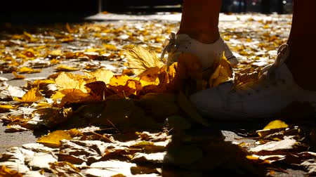 outonal : Slow Motion, Girl Walking in Autumnal Park on Orange Leaves, Scattering Kicking Leaves, Autumn, Shod in White Sneakers and Short Jeans, Leaves Flies From Step.